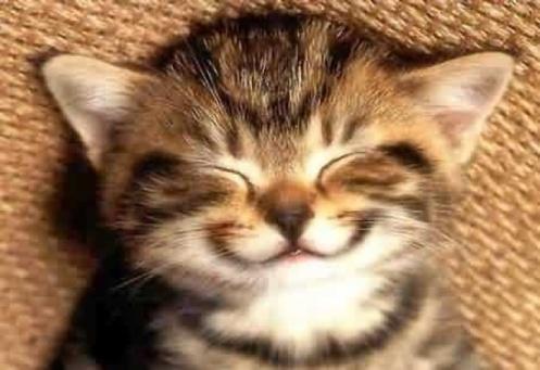 DonCharisma, Don Charisma, Always Be P...Happy