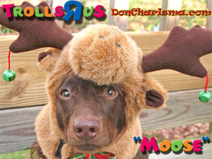 DonCharisma.com Trolls-R-Us Dog Moose