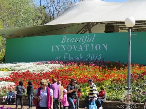 DonCharisma.com,Building Canberra Floriade 2013