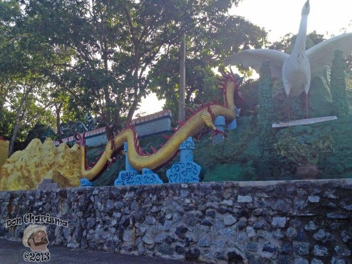 DonCharisma.org Dragon And Crane - Big Buddha Hill