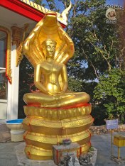 DonCharisma.org Minor Buddha 1 Saturday