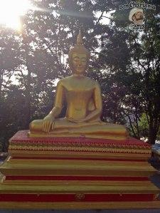 DonCharisma.org Minor Buddha 11