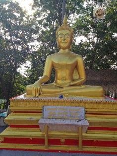 DonCharisma.org Minor Buddha 12