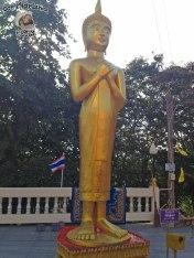 DonCharisma.org Minor Buddha 9 Friday