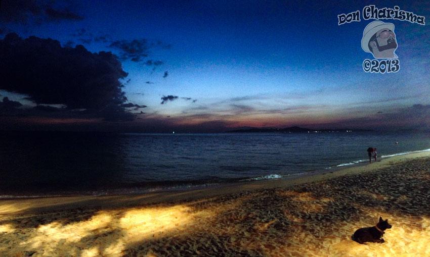 DonCharisma.org Beach Sunset Panorama Dog PTGui-4w-x-1h-P