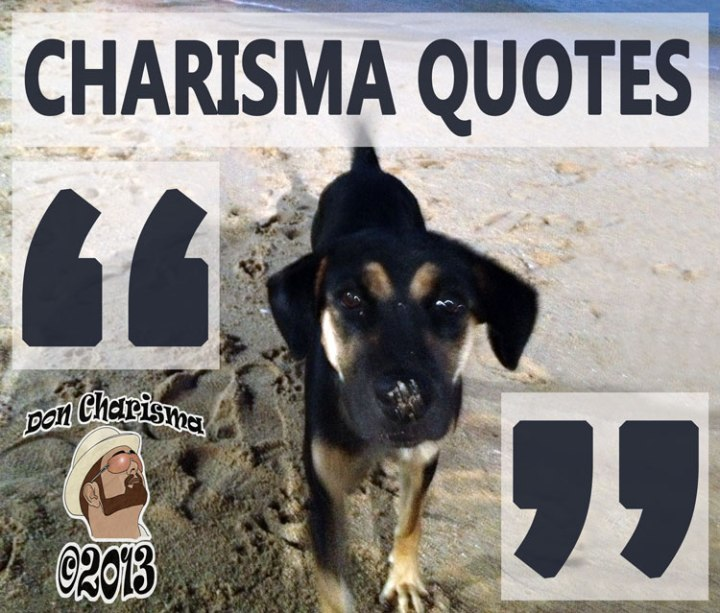 DonCharisma.org Charisma Quotes Poster