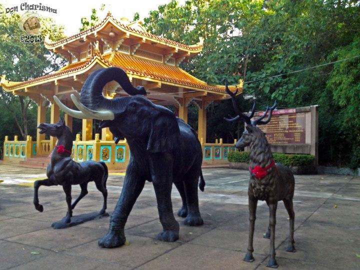 DonCharisma.org Chinese pagoda And Animals 2 - Big Buddha Hill