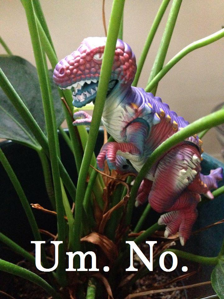 Dinosaur Plant Um No