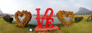 DonCharisma.org Love Panorama iPhone