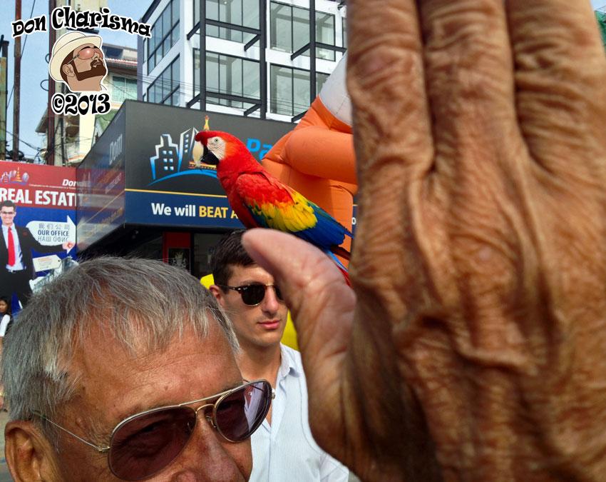 DonCharisma.org The Parrot Pimp 2