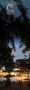 DonCharisma.org Beach Sunset Palm Towerama PTGui-1w-x-7h-L