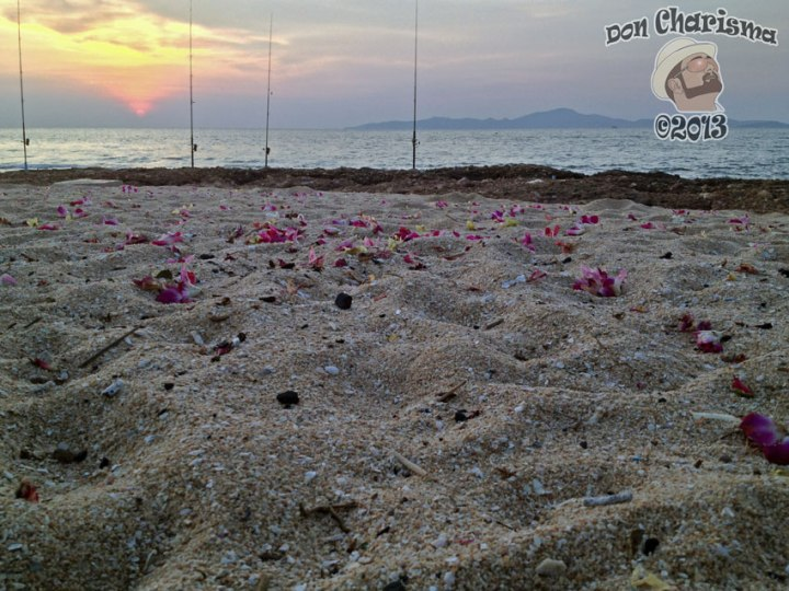 DonCharisma.org Beach Sunset Petals And Fishing 1L