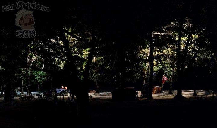 DonCharisma.org-Night-Beech-Tree-Lights-PTGui-4w-x-1h-P
