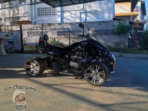 DonCharisma.org-Racing-Quad-Bike-1L