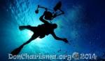 diver-sea-pixabay-79606-DonCharisma.org-1024LE