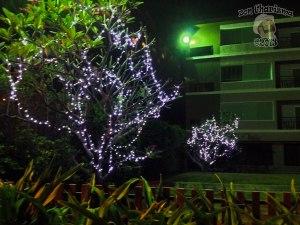 DonCharisma.org-Night-Lighting-Scene-2-Loy-Catong-Festival