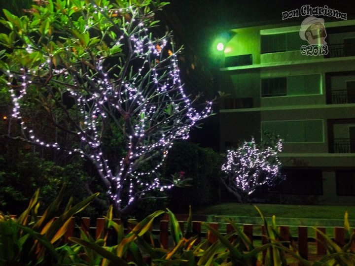 DonCharisma.org-Night-Lighting-Scene-2-Loy-Catong-Festival