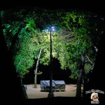 DonCharisma.org-Night-Tree-Lights-Towerama