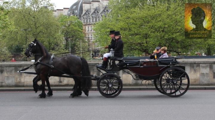 dannyboybroderick-london-horse-drawn-carriage