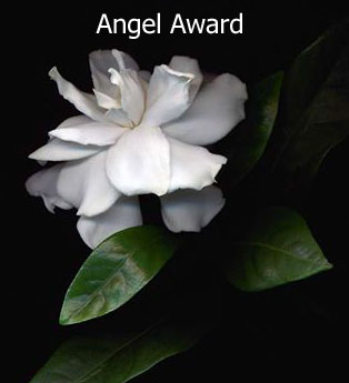 DonCharisma.org-award-angel_edited-1