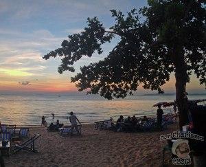 DonCharisma.org-Beach-Sunset-Pano-Tree-2w-x-1h-P