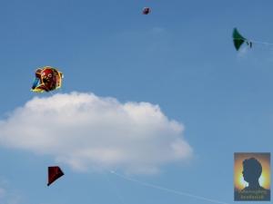 dannyboybroderick-kite-day