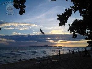 DonCharisma.org-Beach-Sunset-Flying-Bird