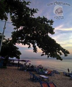DonCharisma.org-Beach-Sunset-Hanging-Tree-PS-1w-x-3h-L