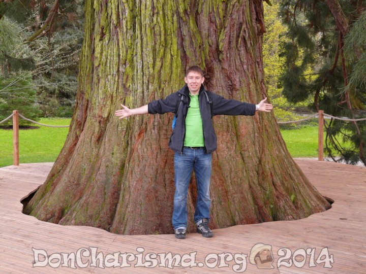 giant-redwood-53050-DonCharisma.org-1024LE