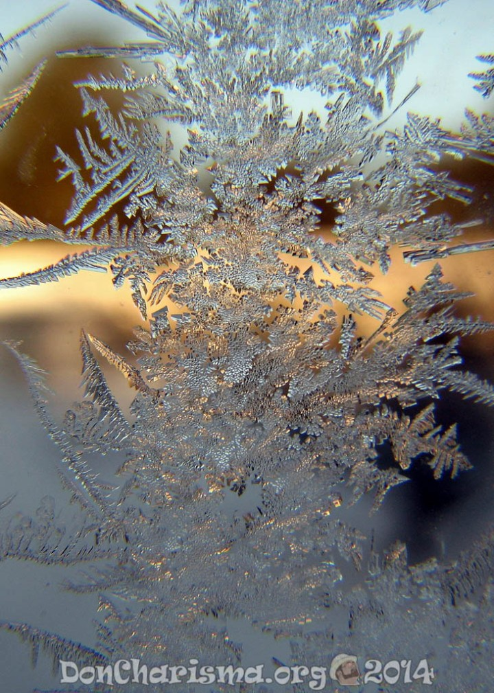 snowflake-421847-DonCharisma.org-1024LE