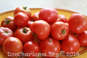 tomato-pb-409404-DonCharisma.org-1024LE
