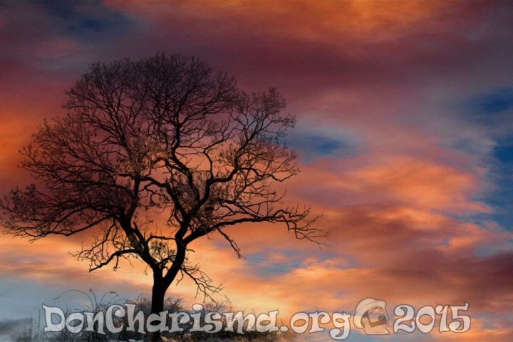 dramatic-sky-clouds-tree-silhouette-pb-210776-DonCharisma-1024LE