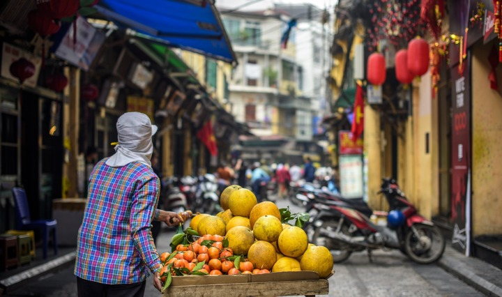 hanoi vietman orange fruit hanoi,vietnam,old,town,colorful,leaf,fruit,orange,grapefruit,tangerine,market,man,person,street,