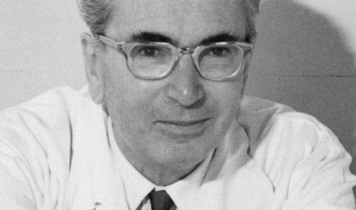 Viktor Frankl - Author Prof. Dr. Franz Vesely - Creative Commons Attribution-Share Alike 3.0 Germany license.