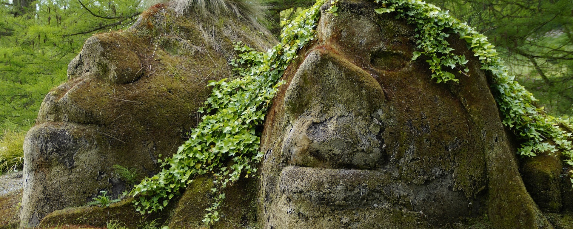 control,gnome,troll,mythical creatures,fairy tales,bemoost,mossy,moss covered,moss,fouling,ivy,pair,man and woman,stone,sculpture,artwork,head,portrait,face,heads,nature,riesen,man,woman,two,mainau island,mainau,lake constance,nature spirits,iceland,huge,stone giant,petrified,fables,popular belief,superstition,nature worship,elves,spirit,force,place of power,new age, DON CHARISMA